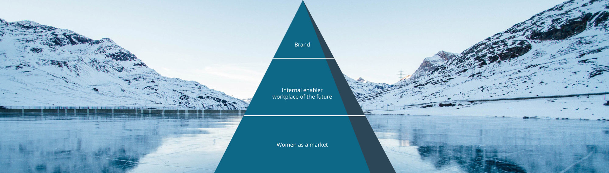 DOIT-smart Gender Diversity Consulting – women as a market